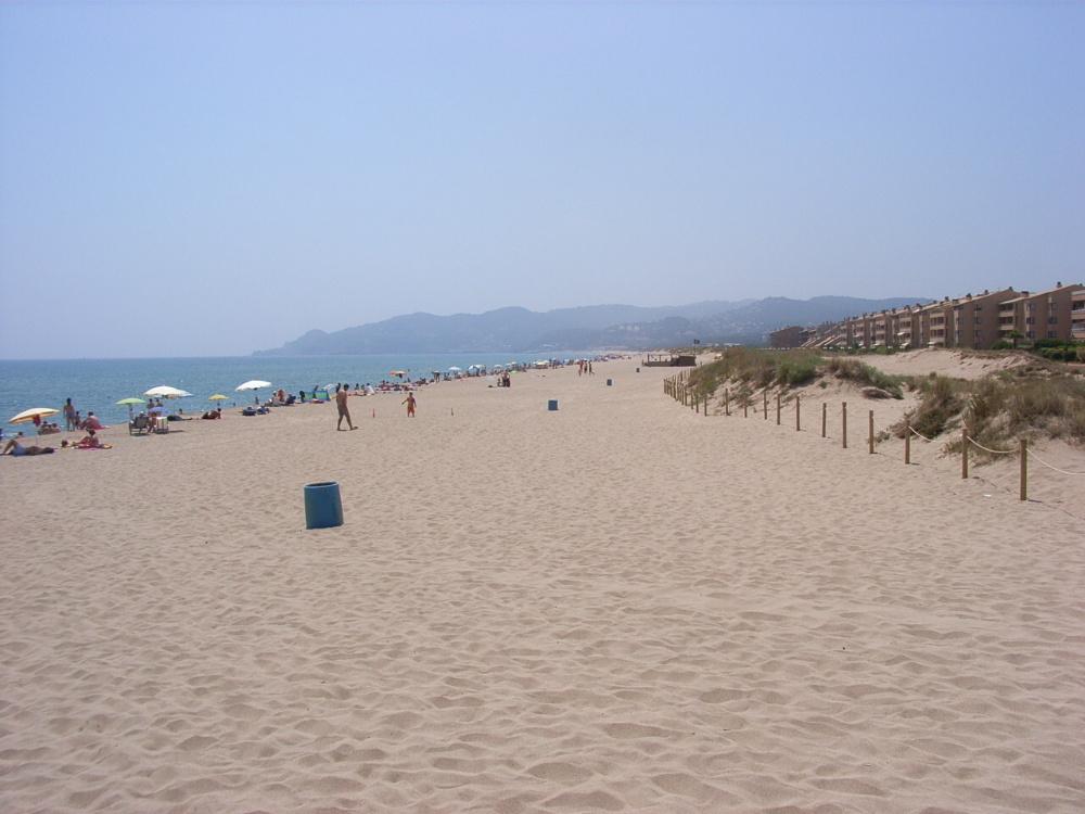 pals-playa